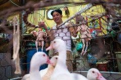 vietnam_hanoi_street_photography_phil_duval_007