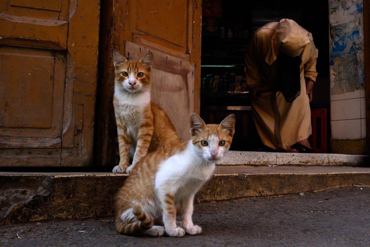 morocco_street_photography_workshop_anna_biret_015
