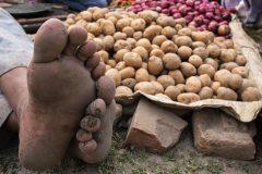 A vegetable seller at Sonepur Mela, India