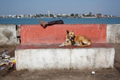 Diu, India, 2012