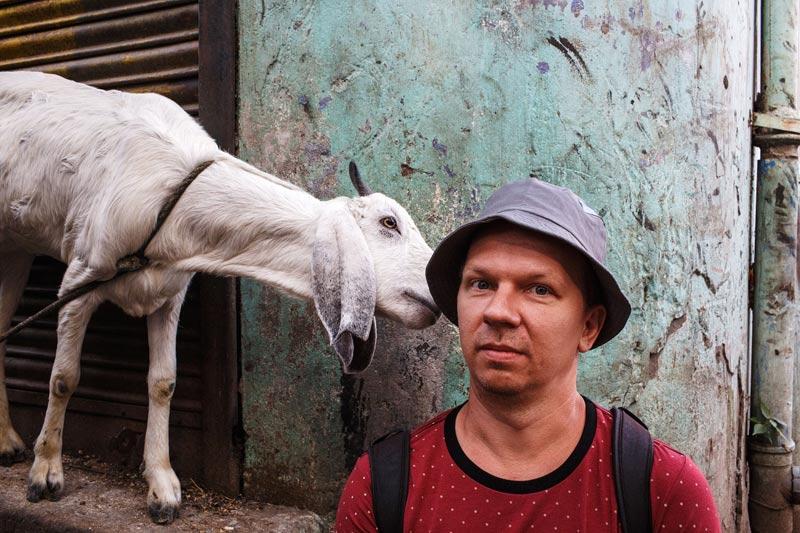 Maciej_Dakowicz_india_indore_goat_800