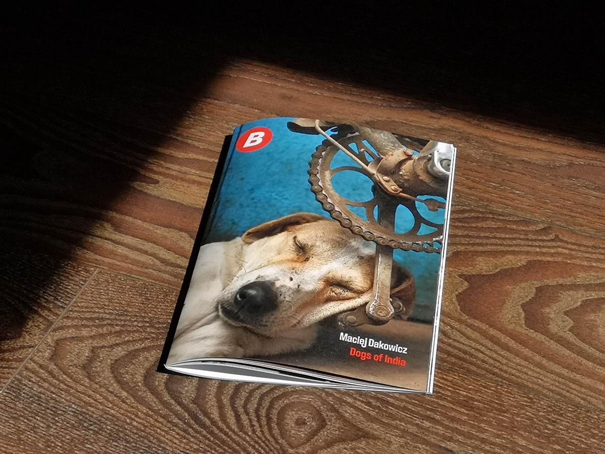 dogs_of_india_zine_bump_books_maciej_dakowicz_cover